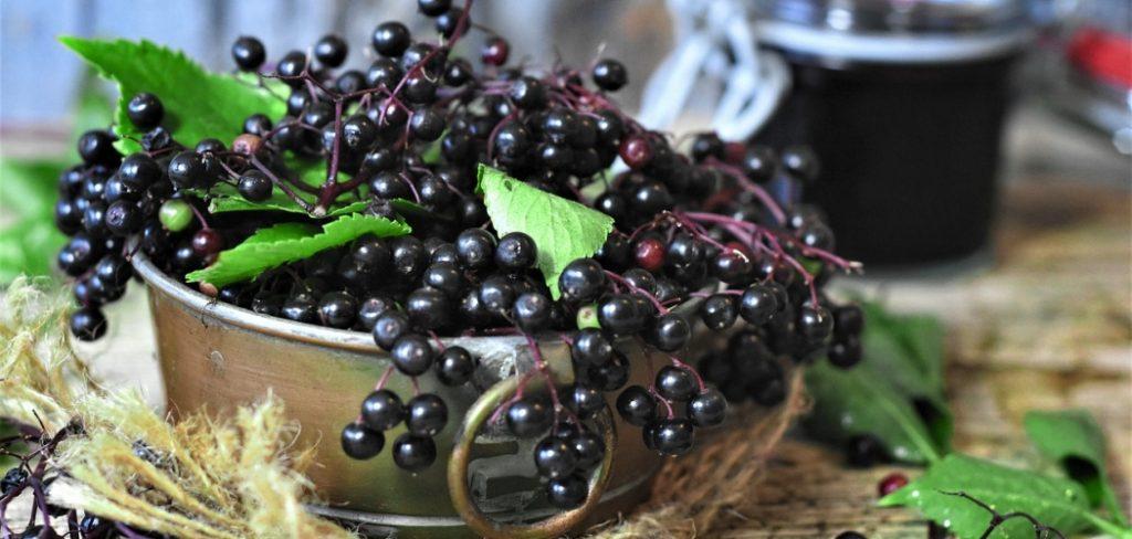 What does Elderberry taste like